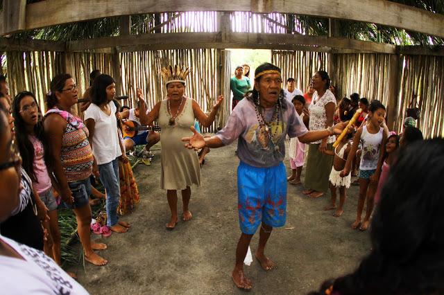 Terra Indígena Piaçaguera - Foto: Carlos Penteado (CPI-SP)